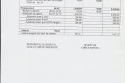 Anexa 1 - Buget (pag. 3)